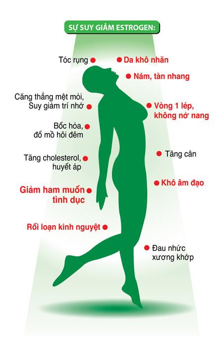 ipink bhipvietnam.com